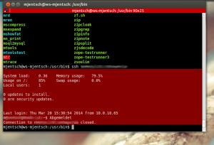 An der Farbe kann man schnell erkennen, auf welchem Host sich das Terminal momentan befindet.
