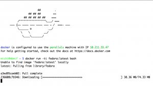 docker_machine_parallels_run